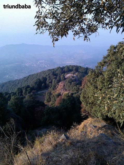 Bir Billing Jungle Trail 4